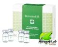 Dermaheal SR Skin Rejuvenating (Korea)